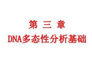 第 三 章  DNA 多态性分析基础