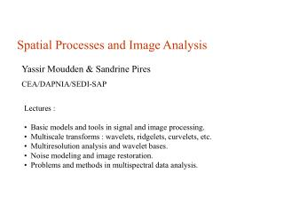 Spatial Processes and Image Analysis