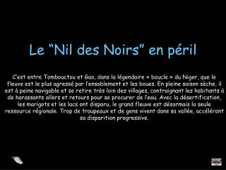 """Le """"Nil des Noirs"""" en péril"""