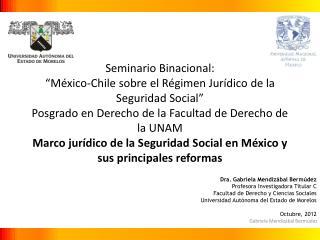 Dra. Gabriela Mendizábal Bermúdez Profesora Investigadora Titular C