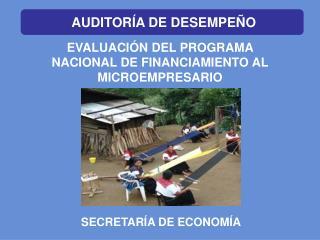EVALUACIÓN DEL PROGRAMA NACIONAL DE FINANCIAMIENTO AL MICROEMPRESARIO