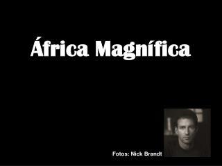 África Magnífica