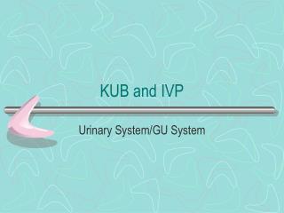 KUB and IVP