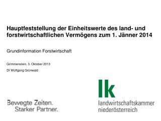 Grundinformation Forstwirtschaft Grimmenstein , 3. Oktober 2013 DI Wolfgang Grünwald