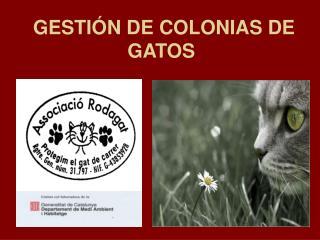 GESTIÓN DE COLONIAS DE GATOS