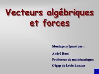 Vecteurs algébriques et forces