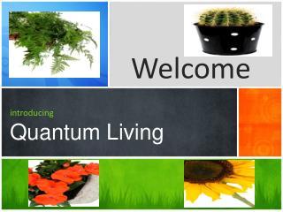 introducing Quantum Living
