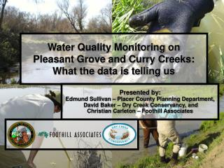 Water Quality Monitoring on  Pleasant Grove and Curry Creeks: What the data is telling us