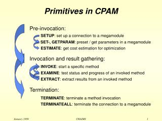 Primitives in CPAM
