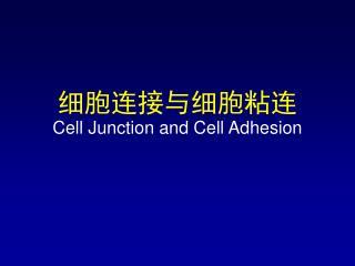 细胞连接与细胞粘连 Cell Junction and Cell Adhesion