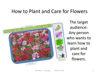 How  to  Plant  and Care for Flowers