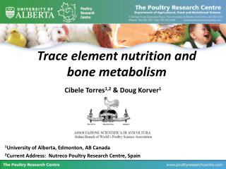 Trace element nutrition and bone metabolism