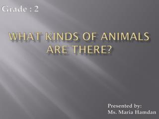 What kinds of animals are there?