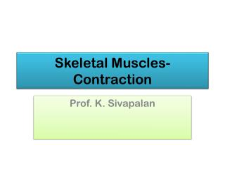 Skeletal Muscles- Contraction