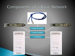 Components of a Basic Network