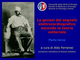 Università degli Studi di Perugia Facoltà di Medicina e Chirurgia Sezione di Fisiologia Umana