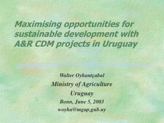 Maximising opportunities for sustainable development with A&R CDM projects in Uruguay