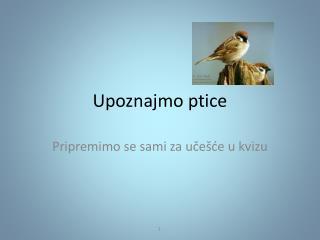 Upo z najmo  ptice