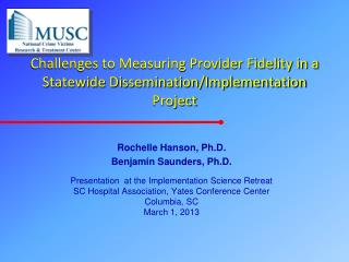 Challenges to Measuring Provider Fidelity in a Statewide Dissemination/Implementation Project