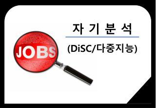 자 기 분 석 ( DiSC / 다중지능 )
