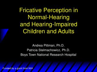 Fricative Perception in  Normal-Hearing  and Hearing-Impaired  Children and Adults