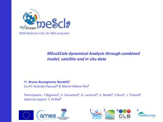 MEsoSCale  dynamical Analysis through combined model, satellite and in situ data