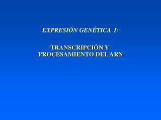 TRANSCRIPCIÓN Y  PROCESAMIENTO DEL ARN