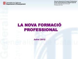LA NOVA FORMACIÓ PROFESSIONAL Juliol 2012