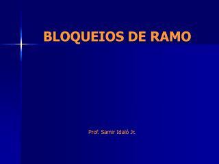 BLOQUEIOS DE RAMO