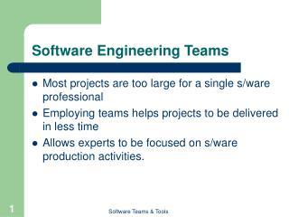 Software Engineering Teams