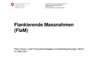 Flankierende Massnahmen (FlaM)