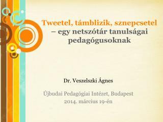 Tweetel ,  támblizik ,  sznepcsetel – egy  netszótár tanulságai pedagógusoknak