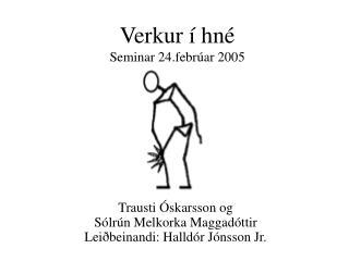 Verkur í hné  Seminar 24.febrúar 2005