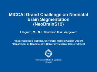 MICCAI Grand Challenge on Neonatal  Brain Segmentation  (NeoBrainS12)