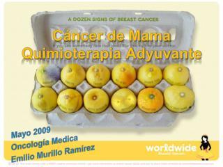 Cáncer de Mama Quimioterapia Adyuvante