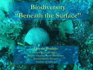 "Biodiversity  ""Beneath the Surface"""