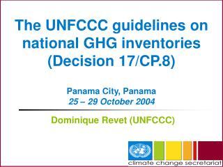 Dominique Revet (UNFCCC)