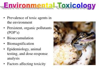 Prevalence of toxic agents in the environment Persistent, organic pollutants POP s Bioaccumulation Biomagnification Epid