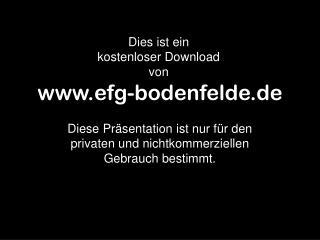 efg-bodenfelde.de