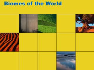 Biomes of the World