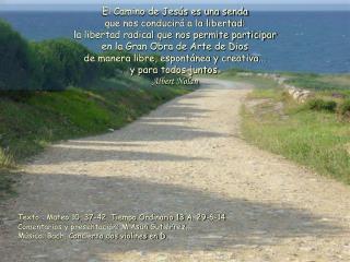 Texto : Mateo 10, 37-42. Tiempo Ordinario 13 A. 29-6-14