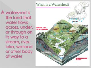 PARTS OF A WATERSHED