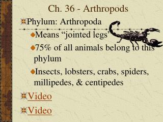 Ch. 36 - Arthropods