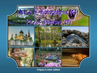 Art de la photographie (44)