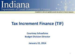 Tax Increment Finance (TIF)