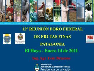 12° REUNIÓN FORO FEDERAL  DE FRUTAS FINAS PATAGONIA