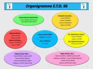 Organigramme E.T.D. 56