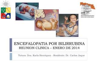 ENCEFALOPATIA POR BILIRRUBINA REUNION CLINICA – ENERO DE 2014