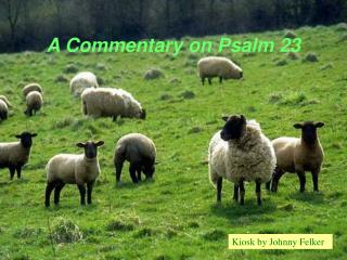 A Commentary on Psalm 23