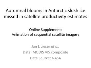 Autumnal blooms in Antarctic slush ice missed in satellite productivity estimates